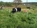 Ограждение пастбищ. электроизгородь - Изображение #2, Объявление #1135618