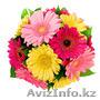 Цветы в Талдыкоргане